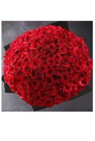 100-punast-roosi