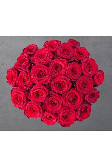 kimp 25 roosiga
